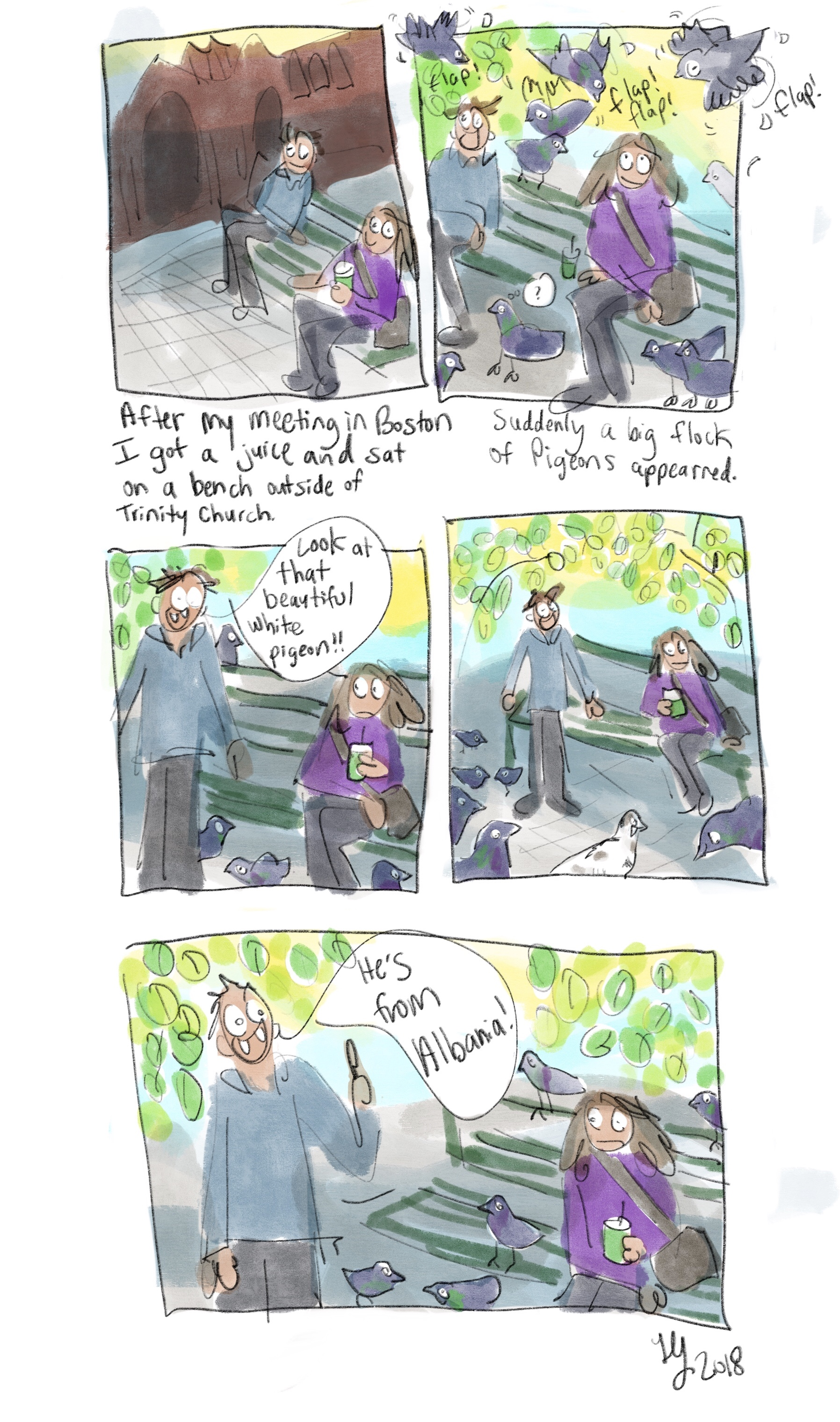 I drew this comic about my trip to Boston. A random stranger pointed out a beautiful white pigeon and told me that the bird was Albania. What?! It's a comic about a weird situation.